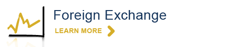 Foreign-exchange-service